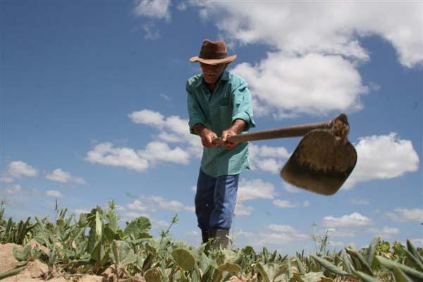 Este ano, 1.600 postos de trabalho foram fechados na zona rural do RN
