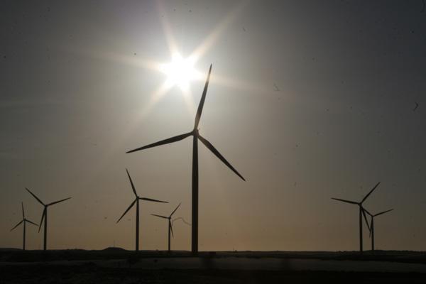 Sobrecarga em subestação obrigou Bionenergy a suspender operações 36 vezes no ano passado