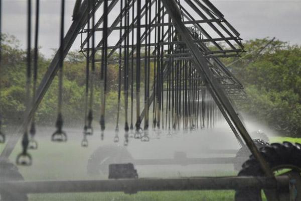 O projeto do perímetro irrigado do Baixo-Açu ainda rasteja. Hoje, menos de 40% do terreno disponível para o projeto é utilizado. O restante da implementação aguarda, desde 2004, uma licitação