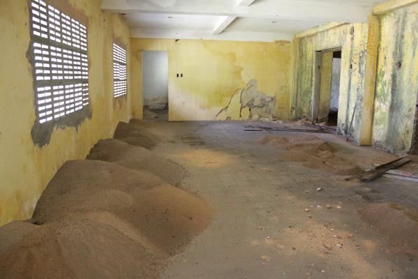 Formigueiros gigantes e cupins infestam os salões do palacete