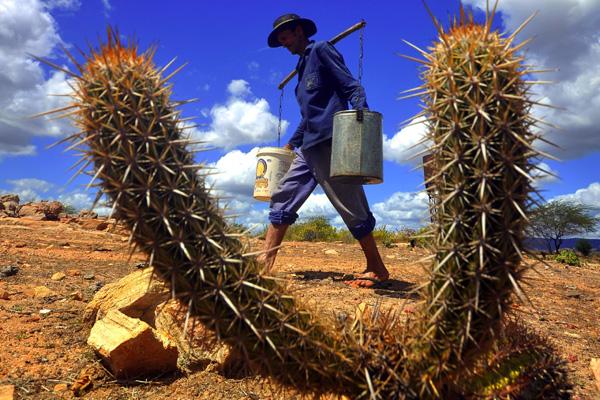 No Rio Grande do Norte os efeitos da seca, em 2012, afetaram todos os setores da economia do Estado, especialmente o agropecuário