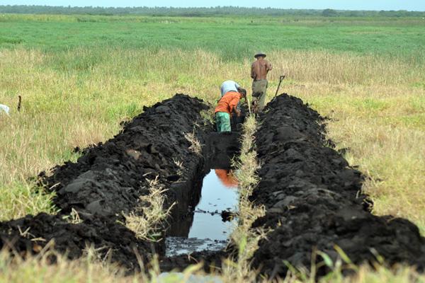 Na esperança de aumento na oferta de água, os produtores começam a abrir novos canais de irrigação