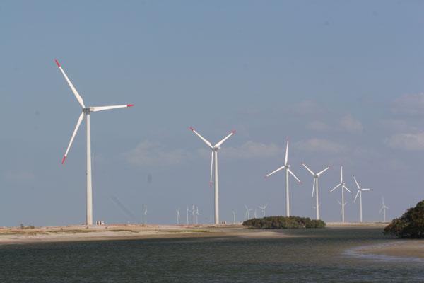 A falta de linhas de transmissão tem deixado parques eólicos ociosos