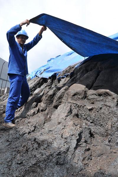 O novo porto seria uma alternativa para produtos como minérios