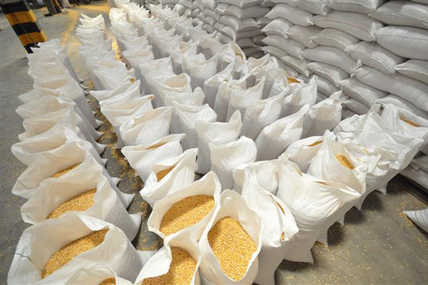 Milho em armazém da Conab: produto que será comprado vai atender a áreas atingidas pela seca