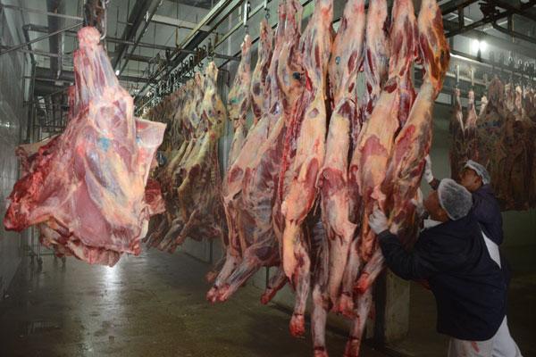 Se consumida em excesso, carne vermelha pode aumentar o risco de doenças cardiovasculares