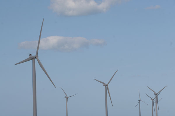 Parque eólico no RN: Estado tem usinas paradas à espera de linhas para escoar a energia