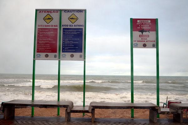 Placas alertam para o risco na praia: banhista foi atacada por tubarão e ficou internada na UTI