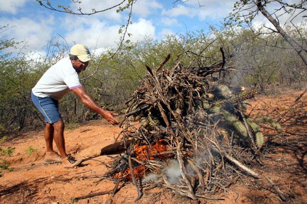 Agricultor queima xique-xique em Lajes: o município foi um dos que sentiram o impacto negativo da seca dentro e fora do campo