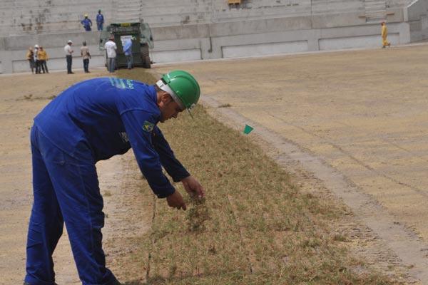 Operários iniciaram o plantio da grama da Arena das Dunas