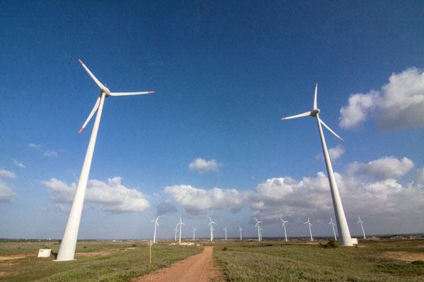 Os projetos de energia eólica são maioria entre os inscritos no leilão: O RN está na disputa