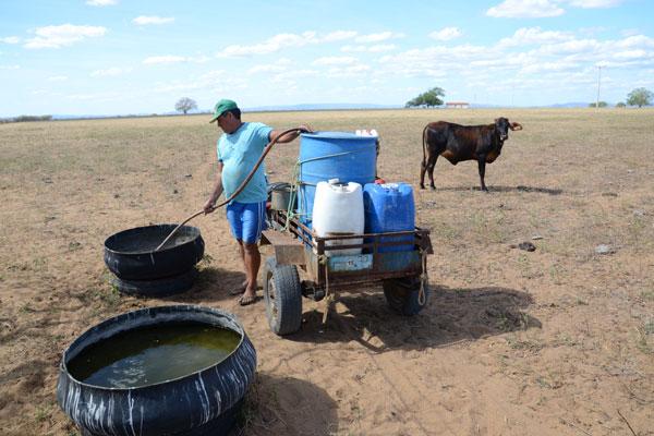 Aumento da temperatura em escala global agrava situação de regiões áridas, como o sertão nordestino que enfrenta secas frequentes