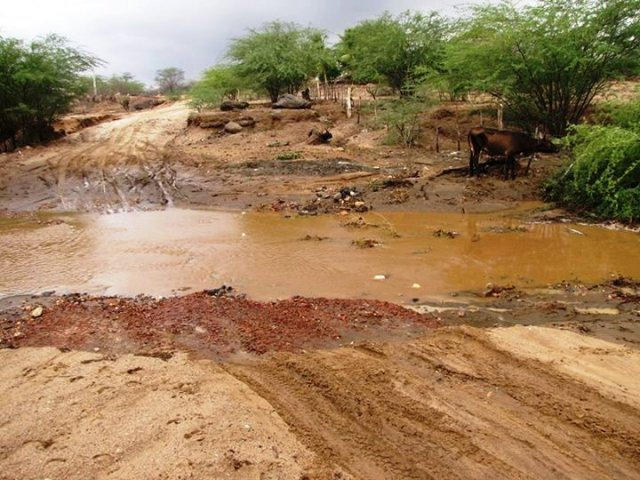 Chuvas em Parelhas surpreenderam os moradores da zona rural