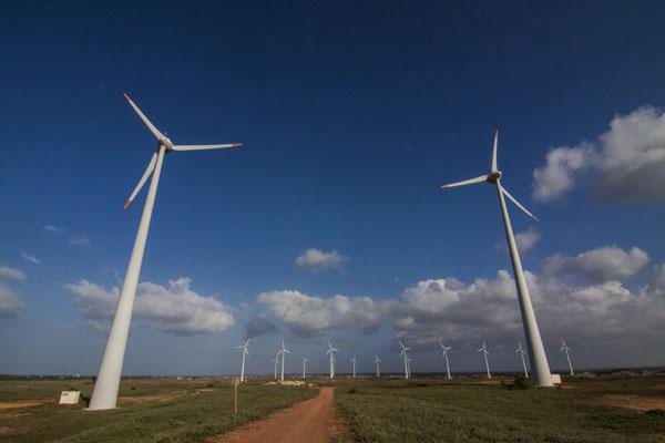 No Rio Grande do Norte, 39 parques eólicos estão parados por falta de linha de transmissão