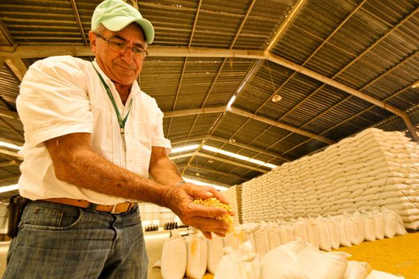 Estoque é insuficiente para atender 790 produtores rurais que aguardam liberação do milho