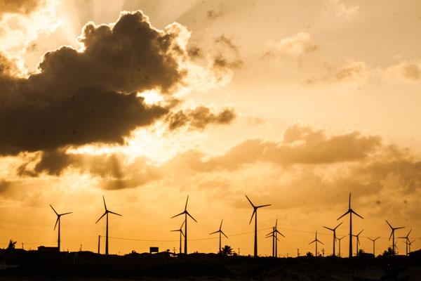 Instalação de novos parques eólicos gera demanda de até 1.500 torres por ano no Brasil