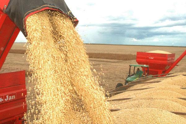 A redução na produção de derivados de soja foi uma das que influenciaram o mau desempenho