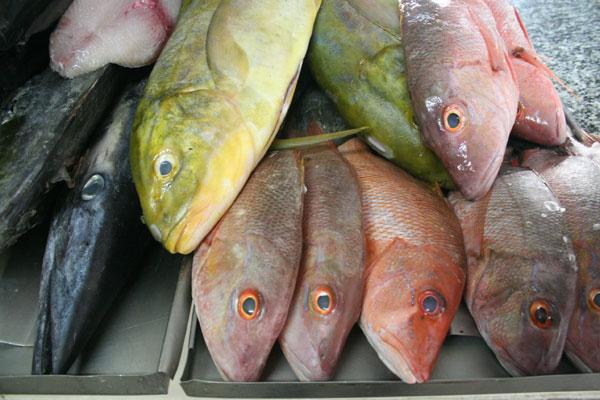Os preços dos peixes frescos, tradicionais, aumentaram este ano