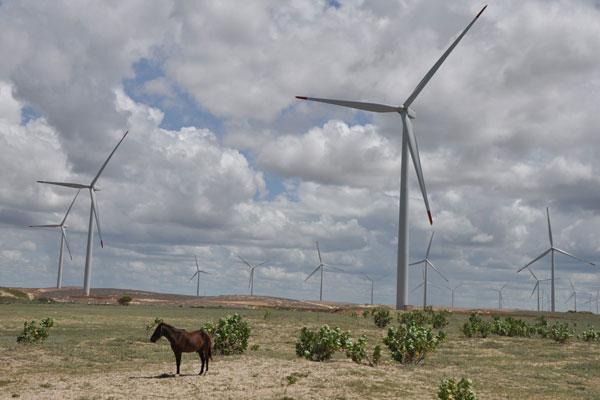 Parque eólico no RN: 15 usinas entraram em operação no Estado