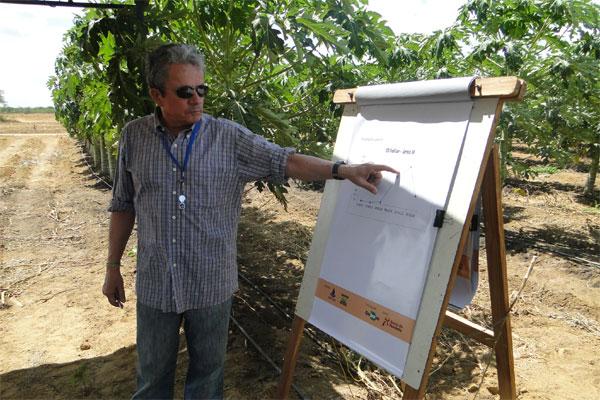 Pesquisador desenvolveu alternativa para combate à praga do ácaro rajado que atacou a região de Baraúna