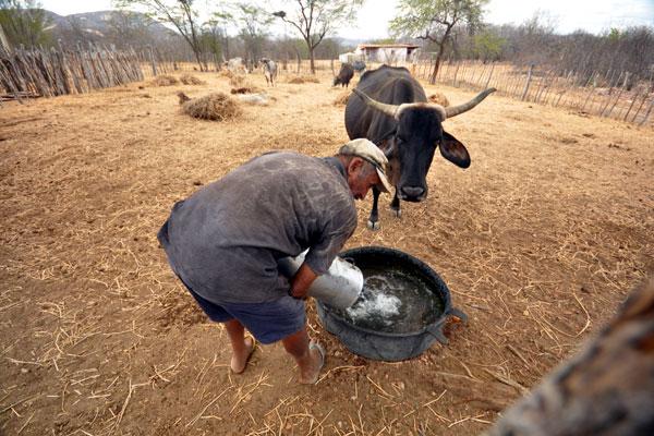 José Neto gasta três horas diárias em busca de água para o gado