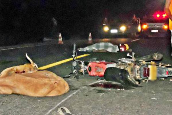 Homem atingiu dois animais e foi esmagado por caminhão na BR-405, em Apodi