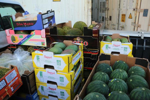 Apesar da seca, o melão produzido na região oeste foi o carro-chefe das exportações em 2014