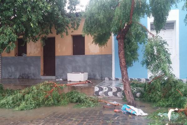 Chuva de granizo derrubou árvores e destruiu telhados de casas em Santana do Matos