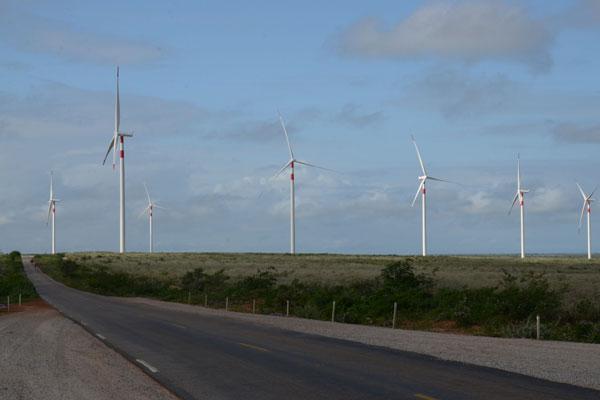 Parque eólico no Rio Grande do Norte: O estado tem 3.100 MW cadastrados para novo leilão