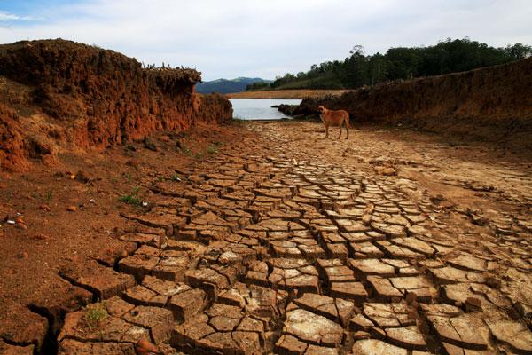 Reservatórios do Sistema Cantareira atingiram o nível mais baixo neste século, obrigando Sabesp a racionar água em São Paulo