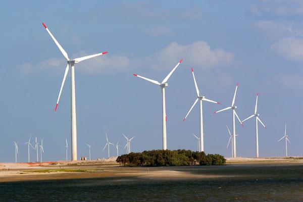 Parque eólico no RN: O estado teve 56 projetos habilitados, com potência somada de 1.223 MW