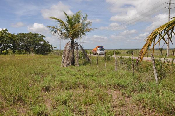 Lote cedido ao Estado para construção de Cadeia Pública fica na comunidade rural de Riachão, a 7 km da sede de Ceará-Mirim