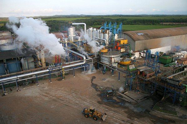 Usina Vale Verde, em Baía Formosa: Empresa está entre as que passaram a contar com o Proadi