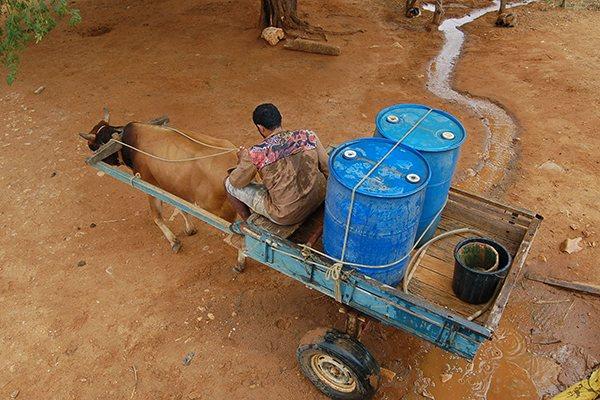 Com falta de chuvas, água para abastecimento humano fica cada vez mais escassa no interior do Rio Grande do Norte
