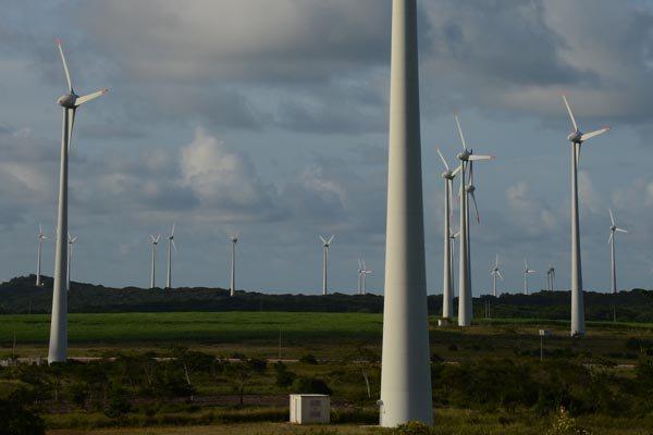 Parque eólico no RN: Leilões estimulam investimentos no setor e a geração de novos empregos
