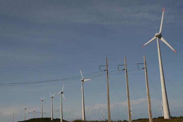 Resultado de imagem para leilao eolicas
