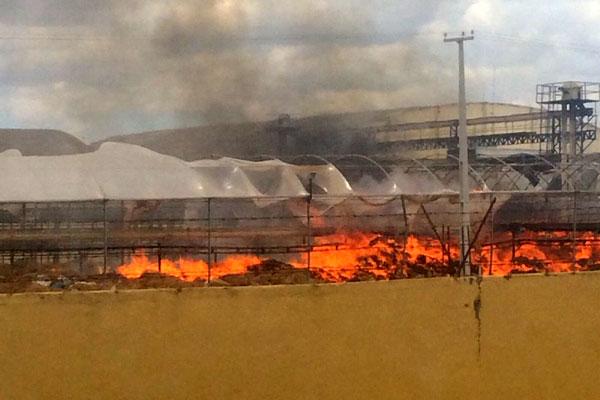 Usina de processamento de castanhas teve incêndio durante tarde de hoje