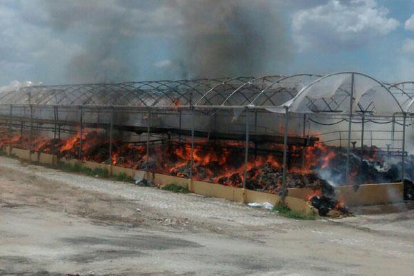 Local do incêndio não tinha funcionários no momento em que o fogo se alastrou