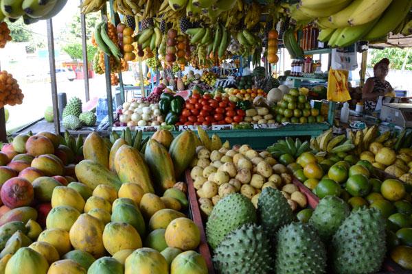 No caminho de ida ou de volta, vale a pena fazer uma parada na feirinha de Pium para experimentar as frutas típicas da região e da estação. As cores e o aroma das frutas são um convite para um cacho de pitomba ou um saquinho de siriguela.