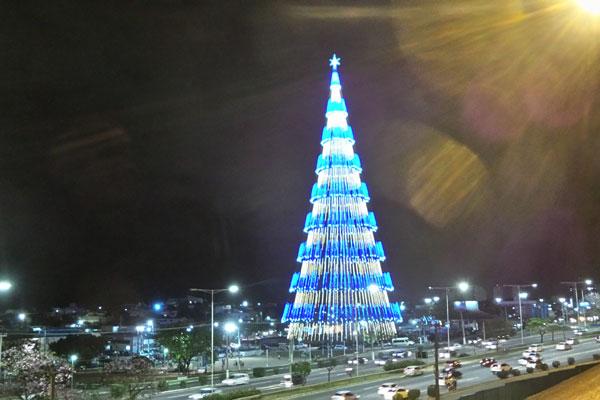 Iluminação da árvore será oficialmente inaugurada no dia 9 de novembro