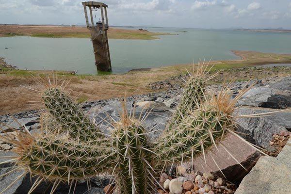 Nível da Barragem Armando Ribeiro Gonçalves, no Vale do Açu, é o menor já registrado pelo Dnocs