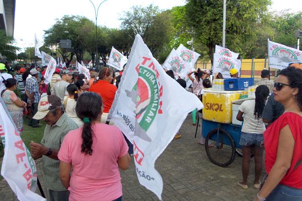 Manifestantes irão caminhando até a Árvore de Mirassol