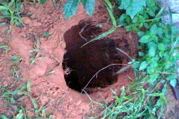 Túnel foi encontrado na manhã desta terça-feira