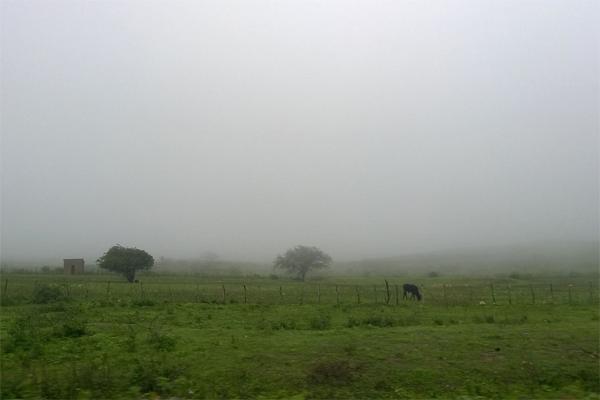 Na Serra do Doutor, em Campo Redondo, chuva mudou paisagem da região