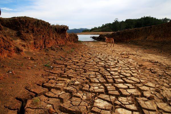 As secas em áreas tropicais teriam afetado a capacidade de regiões absorverem os gases