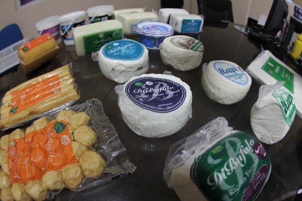 Produção de queijos de búfala do RN é exportada para os EUA, mas fatia vendida no Brasil é maior