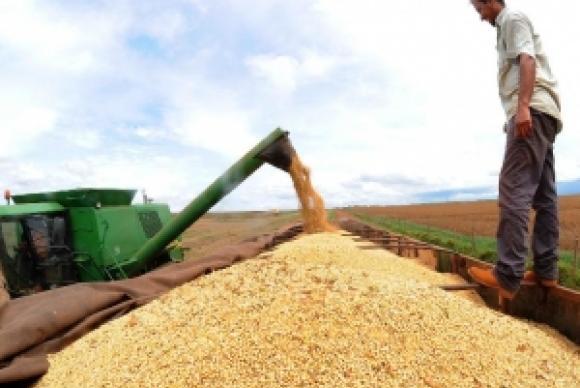 Produção de soja no Brasil deve crescer a 2,6% por ano