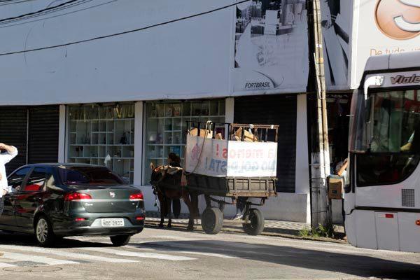 """Projeto institui a """"Política Municipal de Retirada dos Veículos de Tração Animal"""" e proíbe a circulação de carroças nas vias públicas"""
