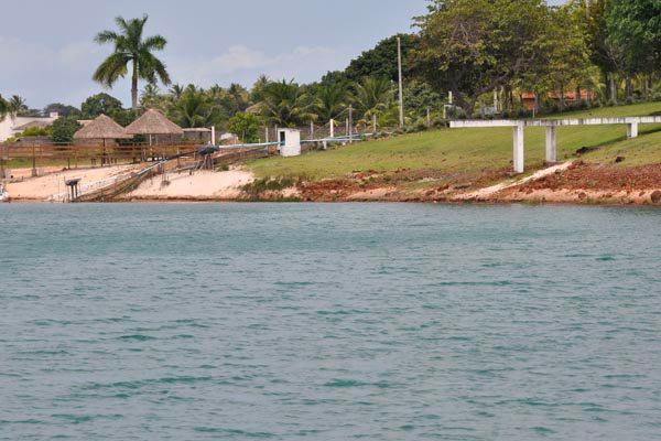 Raizes fincadas à beira da Lagoa do Bonfim