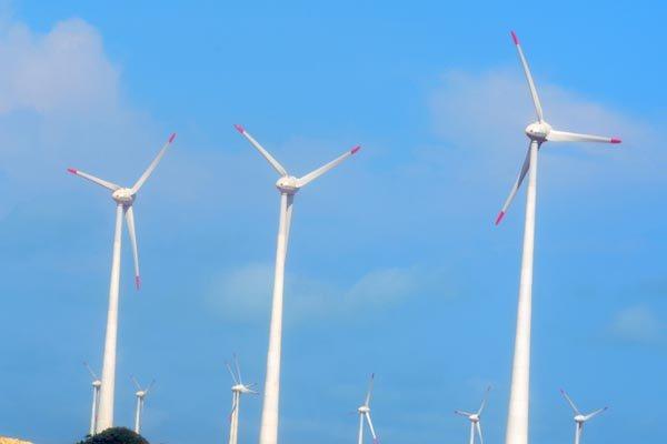Parque eólico no Rio Grande do Norte: Estado é o maior gerador de energia eólica no Brasil